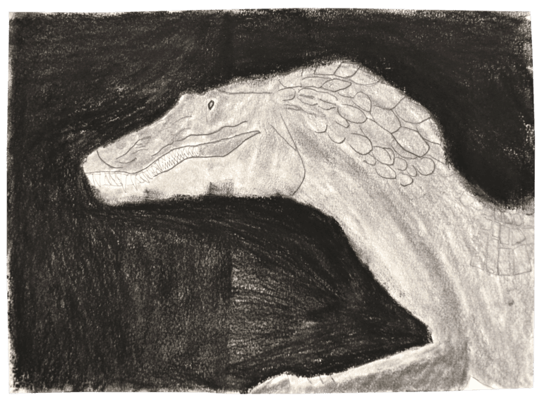 A charcoal drawing of a large reptile