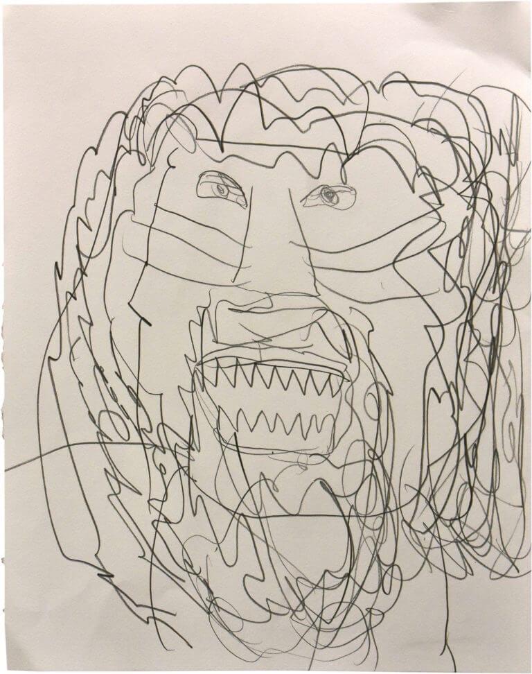 A portrait of a lion, drawn in pencil